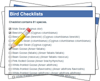 Bird Checklists